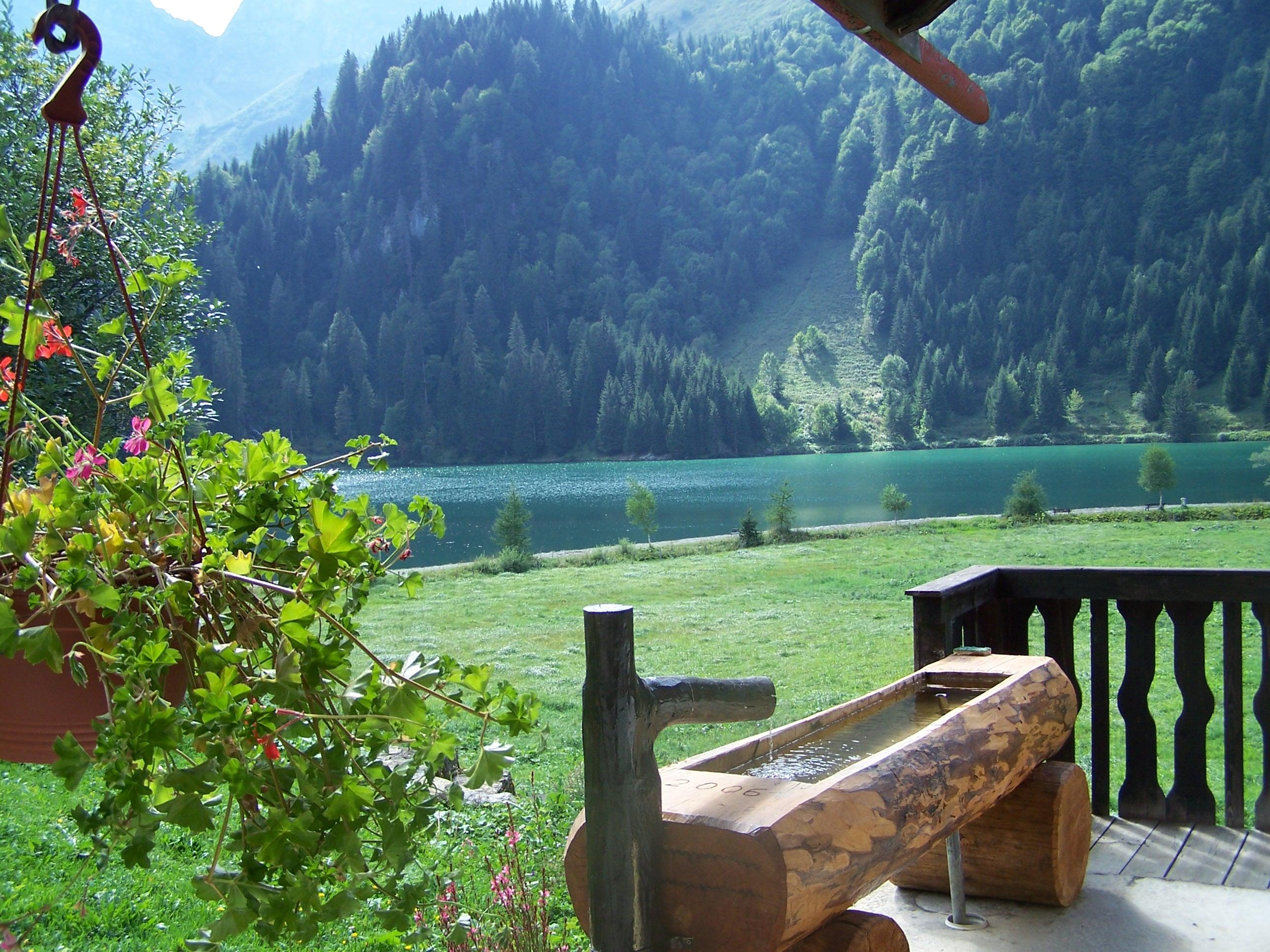 maison chalet abondance portes du soleil chalet au lac des plagnes lc1740. Black Bedroom Furniture Sets. Home Design Ideas